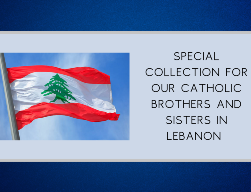 Special Collection for Lebanon